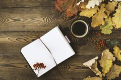 Bästa sikt av dagboken, en kopp av varmt kaffe, hösteksidor och rönnbär på en träbakgrund kopiera avstånd cozy arkivbild