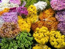 Bästa sikt av den färgrika blomman i blommamarknad Royaltyfri Bild