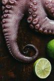 bästa sikt av den nya bläckfisken med limefrukter royaltyfri fotografi