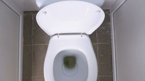 Bästa sikt av den offentliga vita toaletten stock video