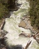 Bästa sikt av den snabba bergfloden Dombay 2008 3280 kant steniga russia för maximum för april uppstigningcaucasus norr Royaltyfri Fotografi