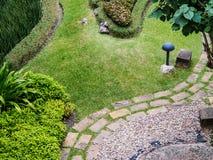 bästa sikt av det gräsfältet och trädet Royaltyfria Foton