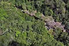 Bästa sikt av en bergflod i busken i den Kondalilla nationalparken Arkivfoton