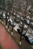 Bästa sikt av en gata med träd och parkerade bilar royaltyfri bild