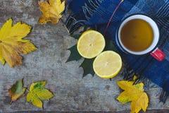 Bästa sikt av en kopp te, en blå halsduk, en skivad citron och sidor på träbakgrund arkivfoto
