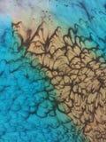 Bästa sikt av en turkos- och bruntsilkehalsduk royaltyfria foton