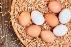 Bästa sikt av ett easter rede med rå ägg Royaltyfria Foton