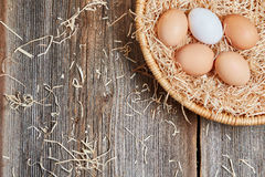 Bästa sikt av ett easter rede med rå ägg Arkivbild