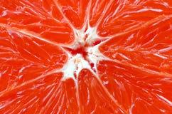 Bästa sikt av ett fragment av grapefruktskivaslutet upp Makrobakgrundstextur arkivbilder