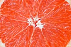 Bästa sikt av ett fragment av grapefruktskivaslutet upp Makrobakgrundstextur arkivfoton
