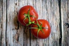 Bästa sikt av ett par av röda tomater på den wood tabellen Royaltyfri Bild