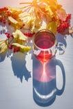 Bästa sikt av exponeringsglaskoppen av svart te på solig höstdag med långa skuggor och filialen av viburnumen med gula sidor på v arkivbilder