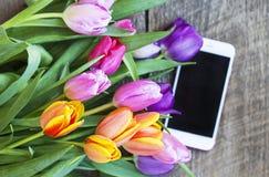 Bästa sikt av färgrika tulpan och mobiltelefonen Royaltyfri Foto