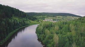 Bästa sikt av floden i bergen som omges av ett grönt skoggem Bästa sikt av floden i skogen lager videofilmer