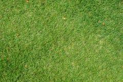 Bästa sikt av gräs textures anfrätt metall för bakgrunder trä Royaltyfri Fotografi