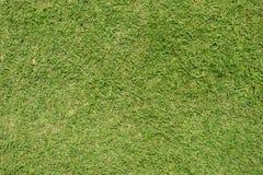 Bästa sikt av gräs textures anfrätt metall för bakgrunder trä Arkivbild