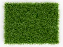 Bästa sikt av grönt gräs för ny vår - naturlig bakgrund royaltyfri illustrationer