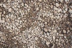 Bästa sikt av grusjord och jordjordning, brunt av liten jord och torr jord Fotografering för Bildbyråer