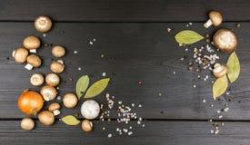 Bästa sikt av nya champinjoner med pepparkornblandningen, lagerbladar, gar Fotografering för Bildbyråer