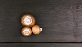 Bästa sikt av nya champinjoner på mörk träbakgrund royaltyfri bild