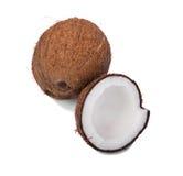 Bästa sikt av nytt helt och snittet i halva kokosnötter som isoleras på en vit bakgrund Sprucket och helt brunt tokigt mycket av  Arkivbilder