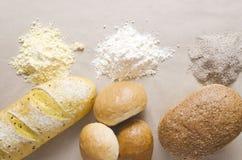 Bästa sikt av olika slag av mjöl och bröd Begrepp av olika typer av mjöl och produkter av det royaltyfria bilder