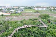 bästa sikt av projektskogen i staden Thailand arkivfoton