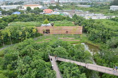bästa sikt av projektskogen i staden Thailand arkivbild
