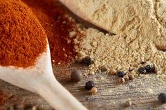 Bästa sikt av träskedar mycket av paprica och curry på trätrummabakgrund, grunt djup av fältet Arkivbild