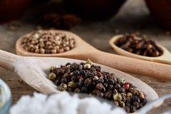 Bästa sikt av träskedar mycket av paprica och svartpeppar på trätrummabakgrund, selektiv fokus Royaltyfri Foto