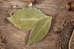 Bästa sikt av träskedar mycket av paprica och svartpeppar på trätrummabakgrund, selektiv fokus Arkivfoton