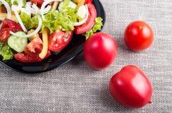 Bästa sikt för närbild på nya tomater och en bunke av vegetarisk sal royaltyfria bilder