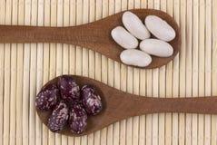 Bästa sikt för Pintobönor och för vita bönor Royaltyfri Fotografi
