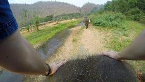bästa sikt 4K av den asiatiska elefanten medan en turistgruppritt till och med floden arkivfilmer
