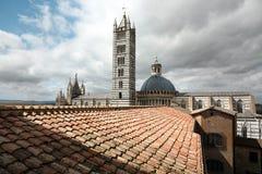 Bästa sikt på den Siena domkyrkan (duomoen) Royaltyfri Foto