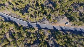 Bästa sikt på vägen i bergskog stock video