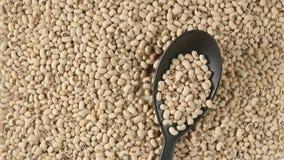 Bästa sikt: sked med nedgångar för vita bönor på en bönaultrarapid stock video