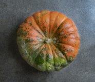 Bästa skott för apelsin- och gräsplanpumpa arkivfoton