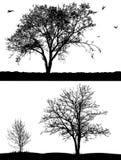 Bäume. stock abbildung