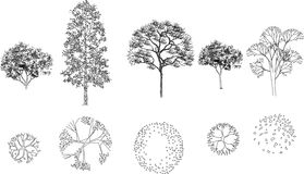 Bild Der Baume Auf Dem Plan Vektor Abbildung