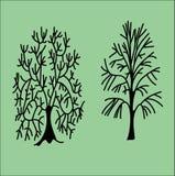 Bäume Stockfoto