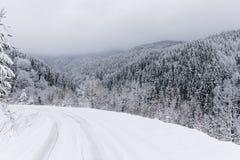 Bäume abgedeckt mit Schnee Stockfoto