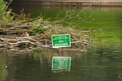 Bäume - Abington-Parkteich Lizenzfreies Stockfoto