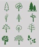 Bäume Ansammlung Auslegungelemente Ikonen eingestellt Stockfotografie