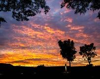 Bäume auf dem Himmel und der Wolke bei dem Sonnenuntergang Stockfotografie