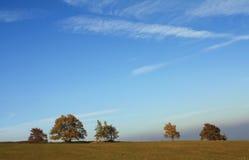 Bäume auf dem Horizont lizenzfreie stockfotos