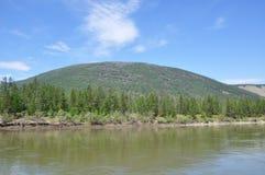 Bäume auf dem Ufer, die Berge Stockfotografie