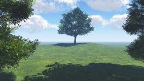 Bäume auf der Wiese Stockfoto