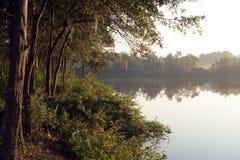 Bäume auf einem nebelhaften Ufer während des Sonnenaufgangs Lizenzfreie Stockfotografie