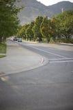 Bäume auf Straße lizenzfreie stockfotografie